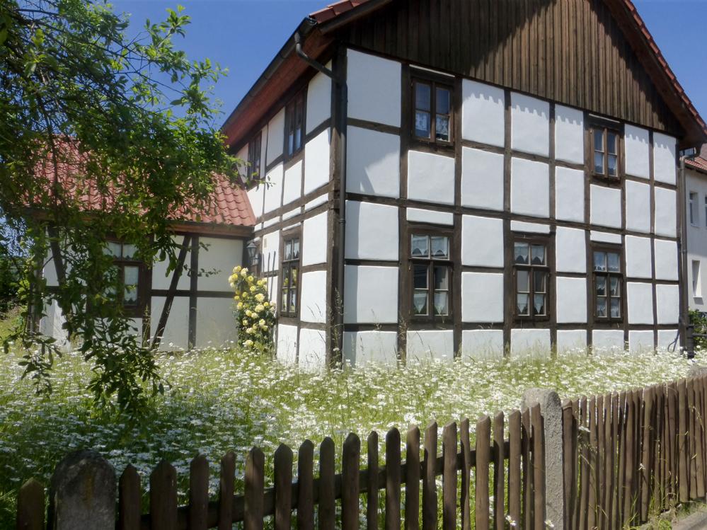 Fachwerkhaus mit blühender Margarittenwiese